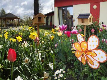 Blumenbeet mit Vogelhaus